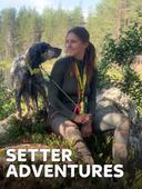 Setter Adventures