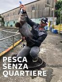 Pesca senza quartiere