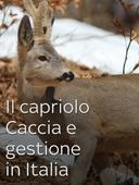 Il capriolo - Caccia e gestione in Italia