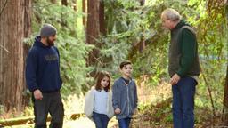 Un rifugio tra le sequoie in California