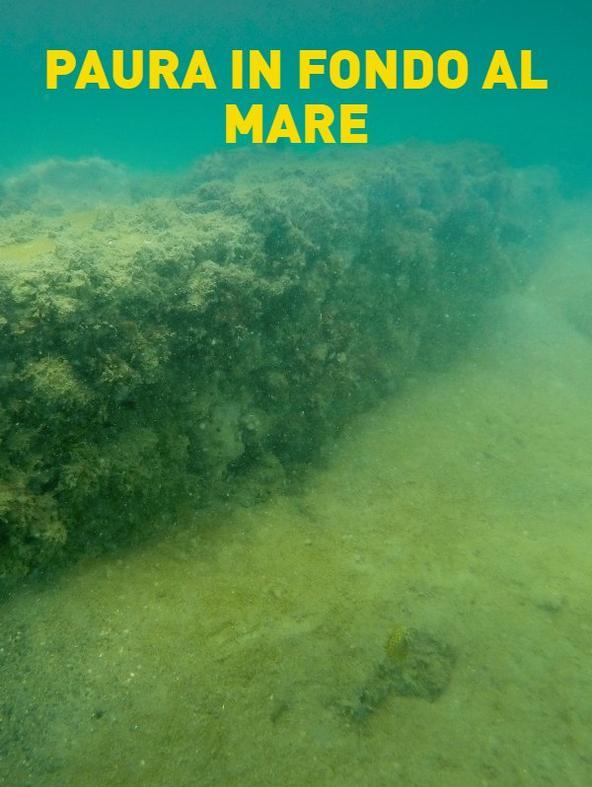 Paura in fondo al mare -  -