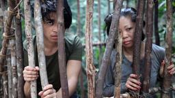 Terrore nella giungla