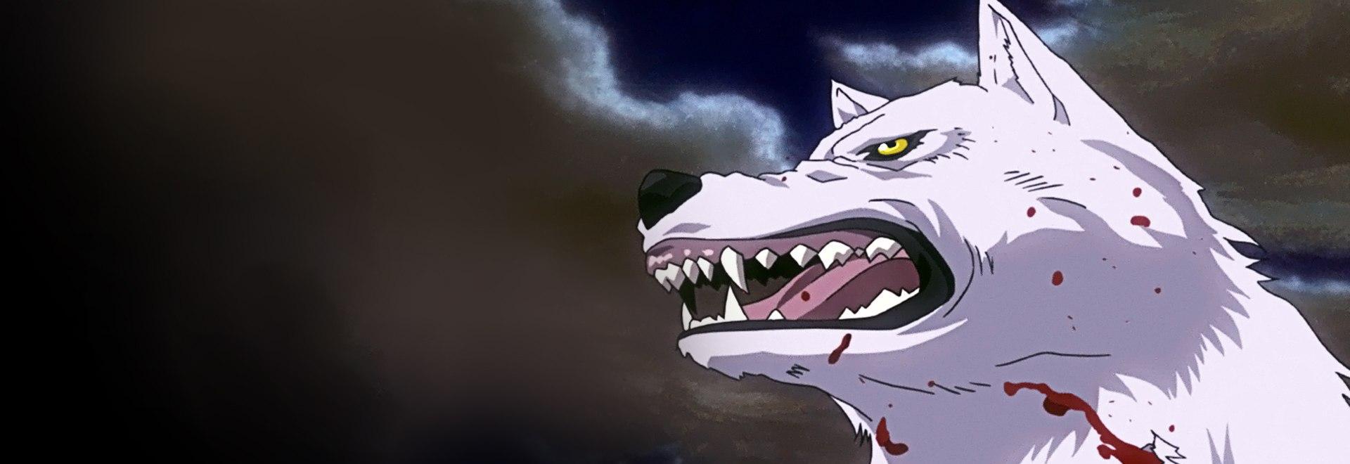 Il lupo grigio