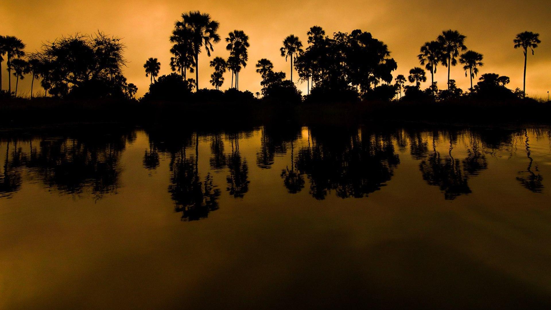 NatGeo Wild +1 Il miracolo della pioggia: Okavango