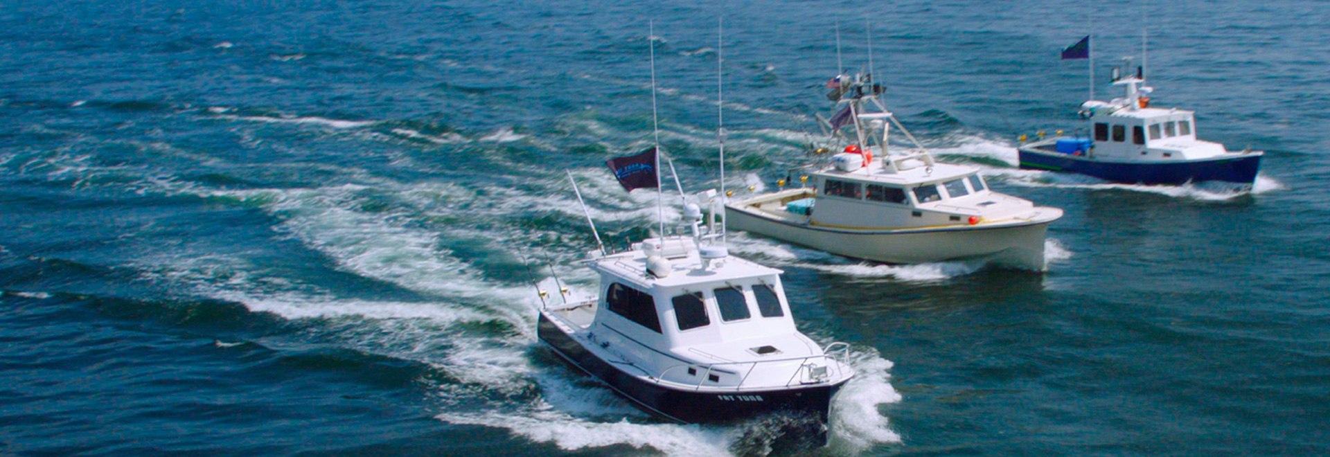 Pesca finale