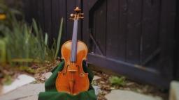 L'elmo dei templari, violino, mappamondo