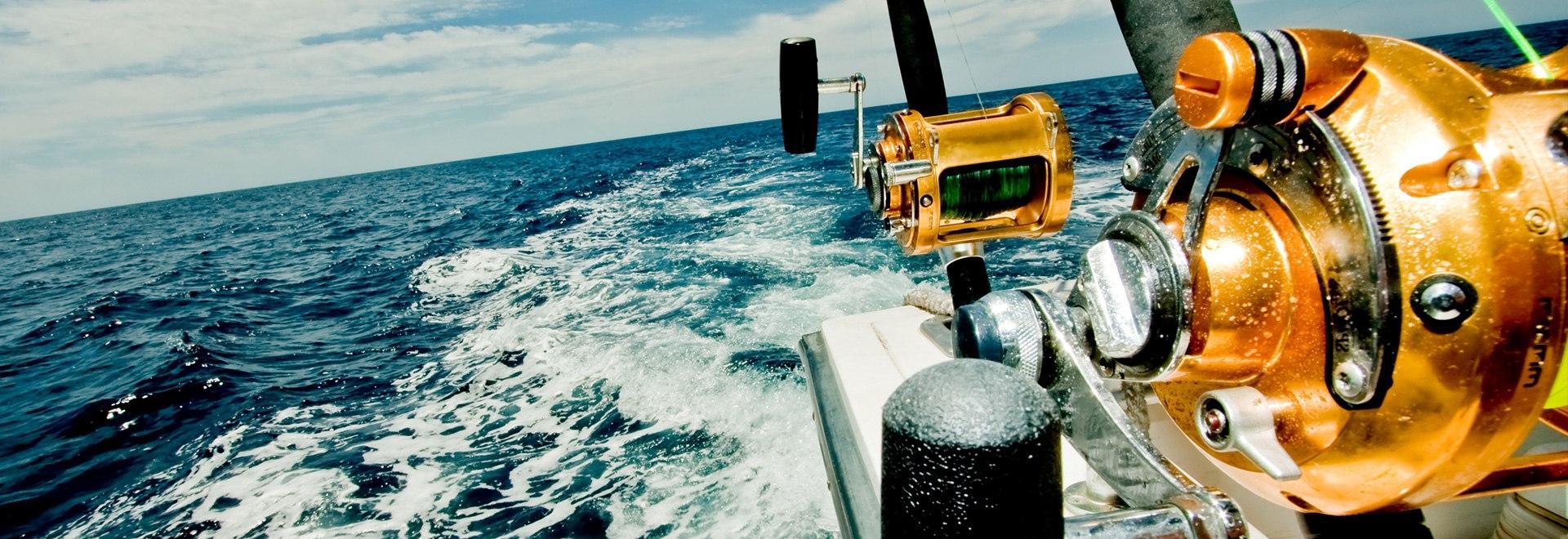 Cronache di pesca dalla barca