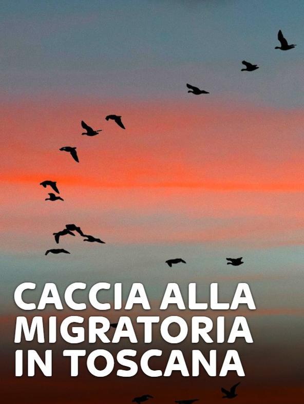 Migratoria in Toscana
