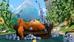 Il cuscino dell'orso