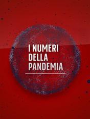 I numeri della Pandemia