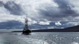 Pericolo in fondo al mare