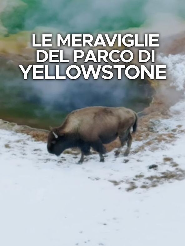Le meraviglie del parco di Yellowstone