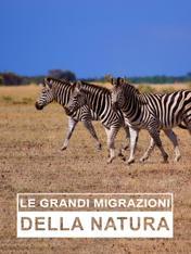 S1 Ep1 - Le grandi migrazioni della natura