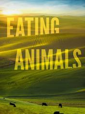Perche' mangiamo gli animali?