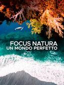 Focus Natura: Un mondo perfetto