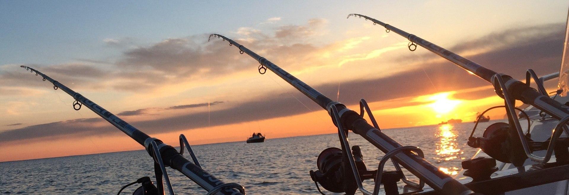 Wreck! Storie di pesca su relitti