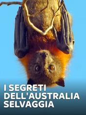 S1 Ep4 - I segreti dell'Australia selvaggia