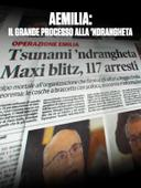 Aemilia - Il grande processo alla 'Ndrangheta