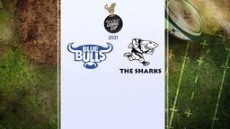 Bulls - Sharks