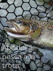S1 Ep2 - Abc della pesca alla trota