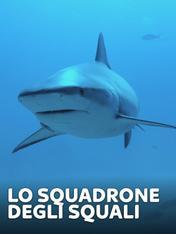 S1 Ep4 - Lo squadrone degli squali
