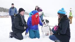 Servizio fotografico sulla neve