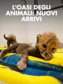 L'oasi degli animali: nuovi arrivi