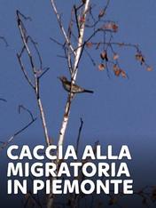 S1 Ep1 - Caccia alla migratoria in Piemonte