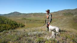 A caccia con un nuovo amico