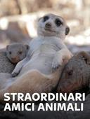 Straordinari amici animali