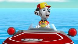 Sea Patrol: i cuccioli salvano il Sea Patroller