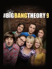 S9 Ep11 - Big Bang Theory
