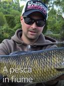 A pesca in fiume