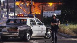 Los Angeles brucia