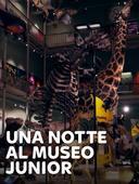 Una notte al museo - Junior