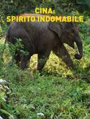 Cina: spirito indomabile