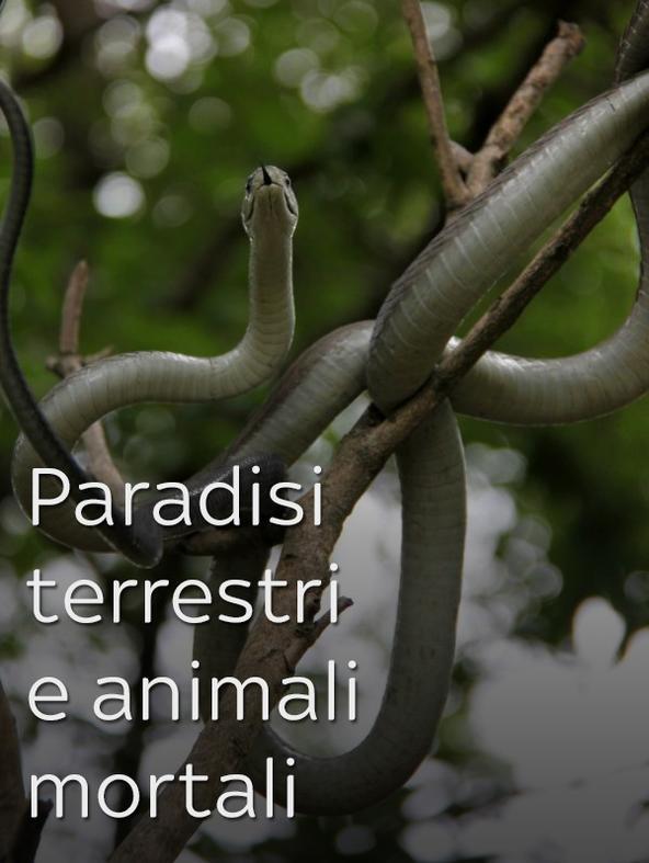 Paradisi terrestri e animali mortali