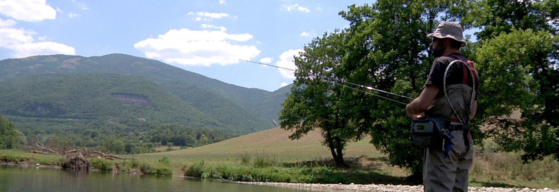Gli ambienti fluviali
