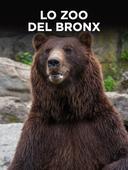 Lo zoo del Bronx