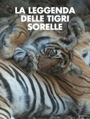 La leggenda delle Tigri sorelle