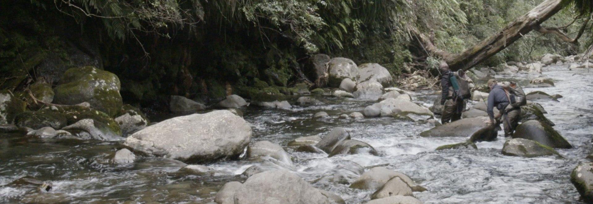 Pesca alle trote in canale. 1a parte