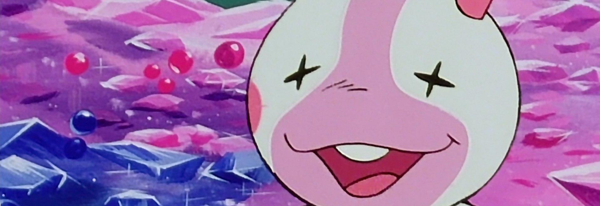 Nel mondo degli uccelli