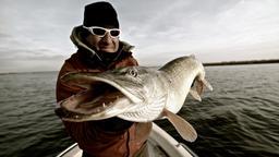 Mammuth Pike Boat Fishing