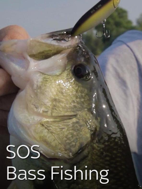 SOS Bass Fishing 3