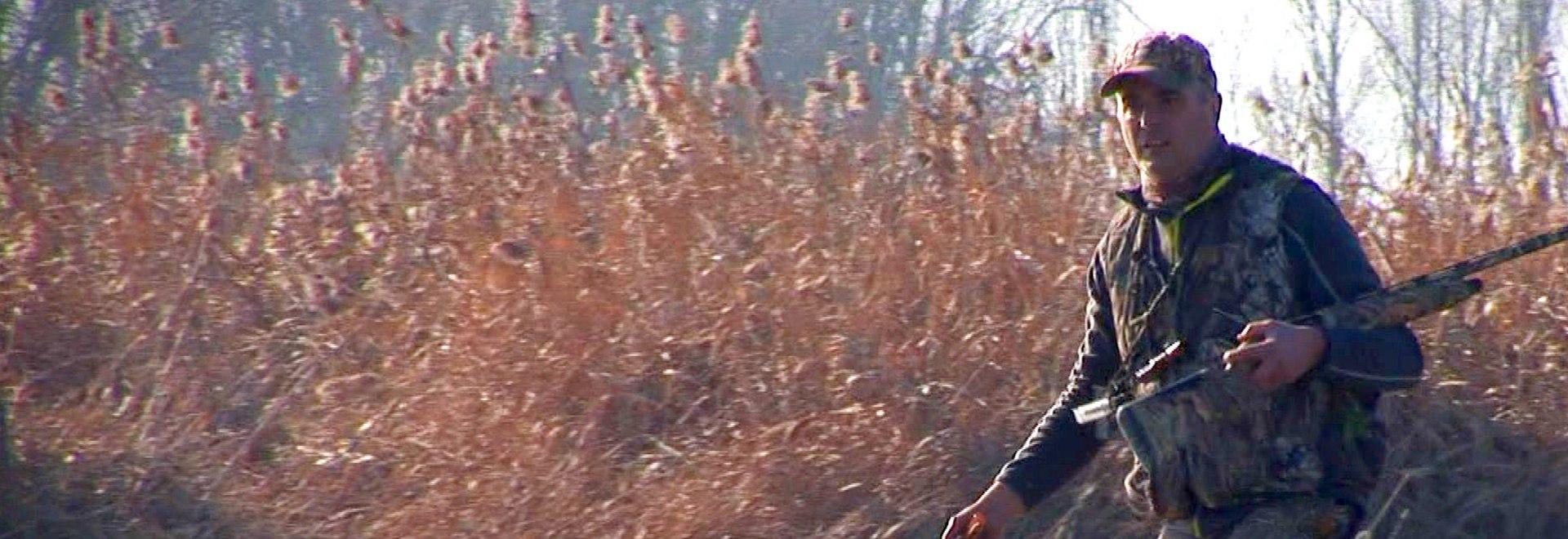 Caccia alle anatre al campo