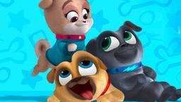 Puppy Dog Pals - Stag. 2 Ep. 26 - Un nuovo cucciolo in citta' / Un unicorno per Chloe