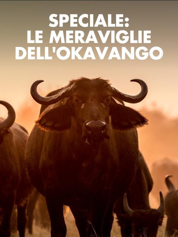 Speciale: le meraviglie dell'Okavango