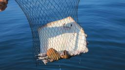 Sopravvivere all'uscita in barca