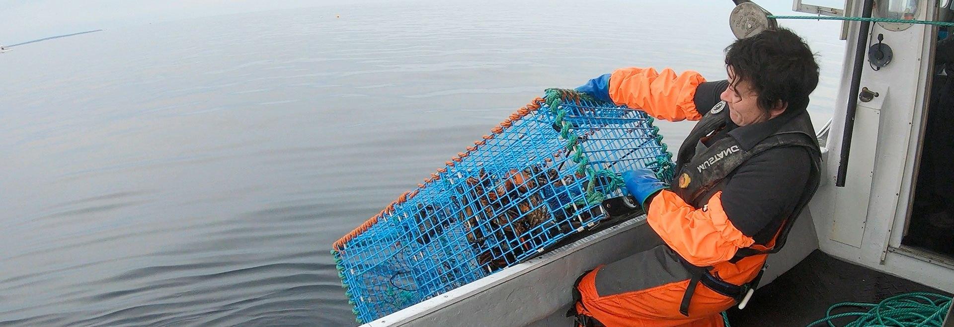 Lobster Wars: a caccia di chele