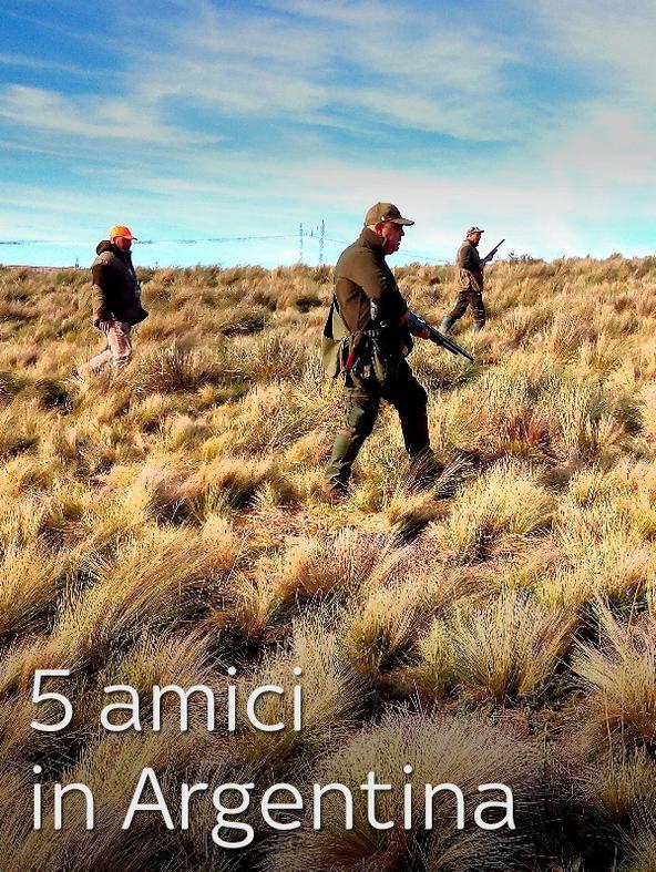 5 amici in Argentina 1